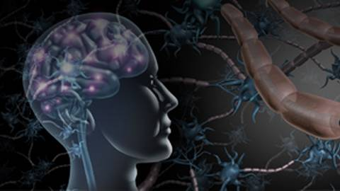 From Neuropathology to New Pathophysiological Concepts and Clinical Perspectives