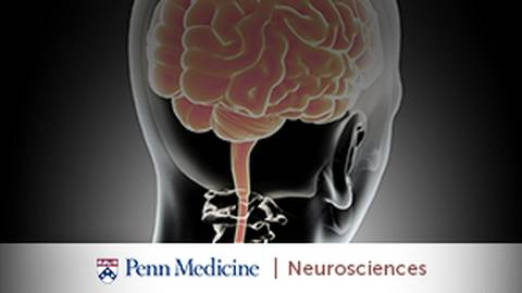 4 Latest Advances in Epilepsy Treatment at Penn