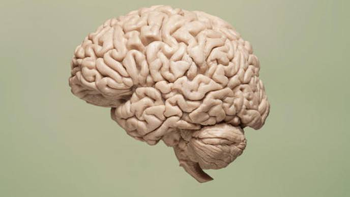 Study Identifies New Neurodegenerative Disorder