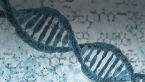 MS Pathogenesis: Understanding the Genetic & Environmental Triggers